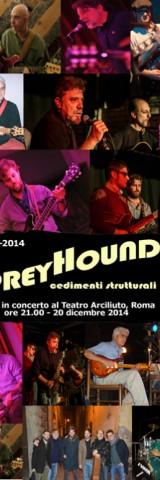 greyhound_20122014